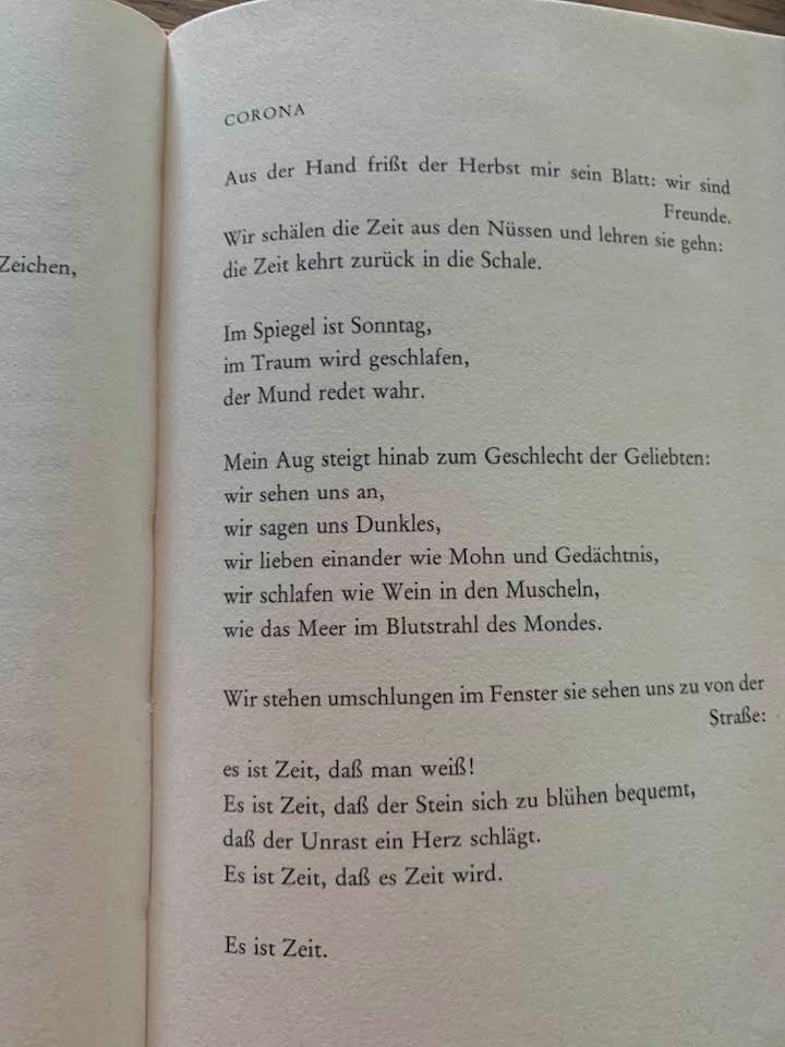 "Paul Celan; Corona. aus dem Band ""Mohn und Gedächtnis""."