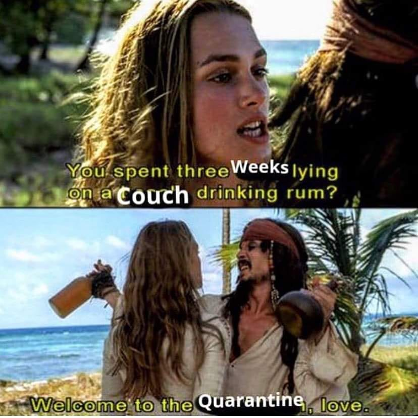 JAck Sparrow enjoys quarantine