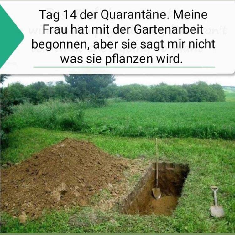 Quarantäne & Gartenarbeit