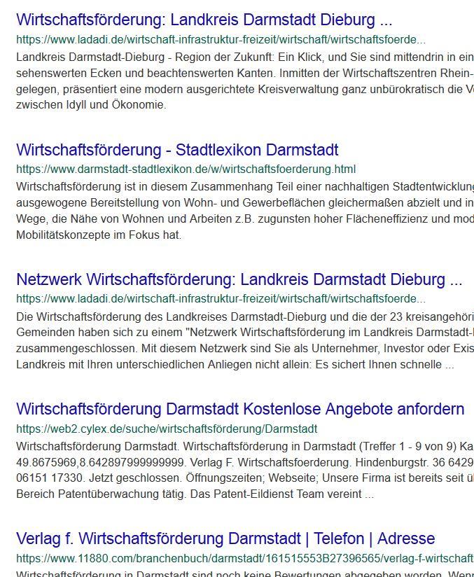 """Wenn ich bei Microsoft nach """"Wirtschaftsförderung Darmstadt"""" suche - komme ich zum Landkreis DaDi."""